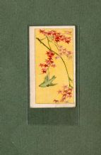 Vintage Chinese tobacco insert cigarette card CHINA RARE  #282